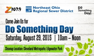 Do Something Day August